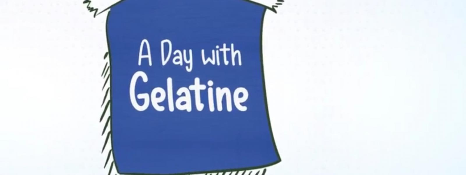 A Day with Gelatine